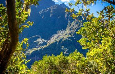 Bureau Montagne Réunion 3