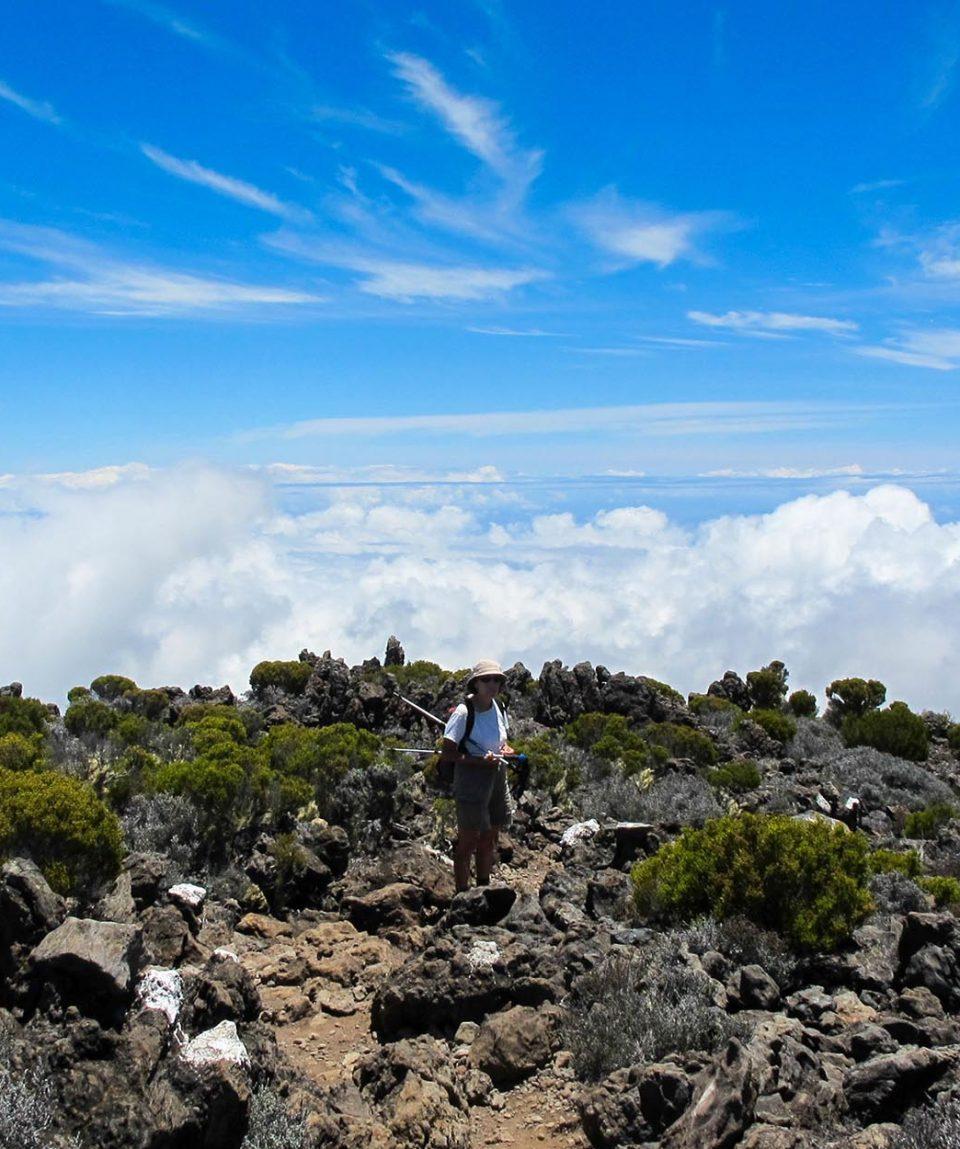 Bureau Montagne Réunion 5