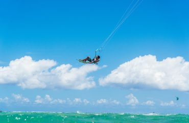 Pacific kite 2