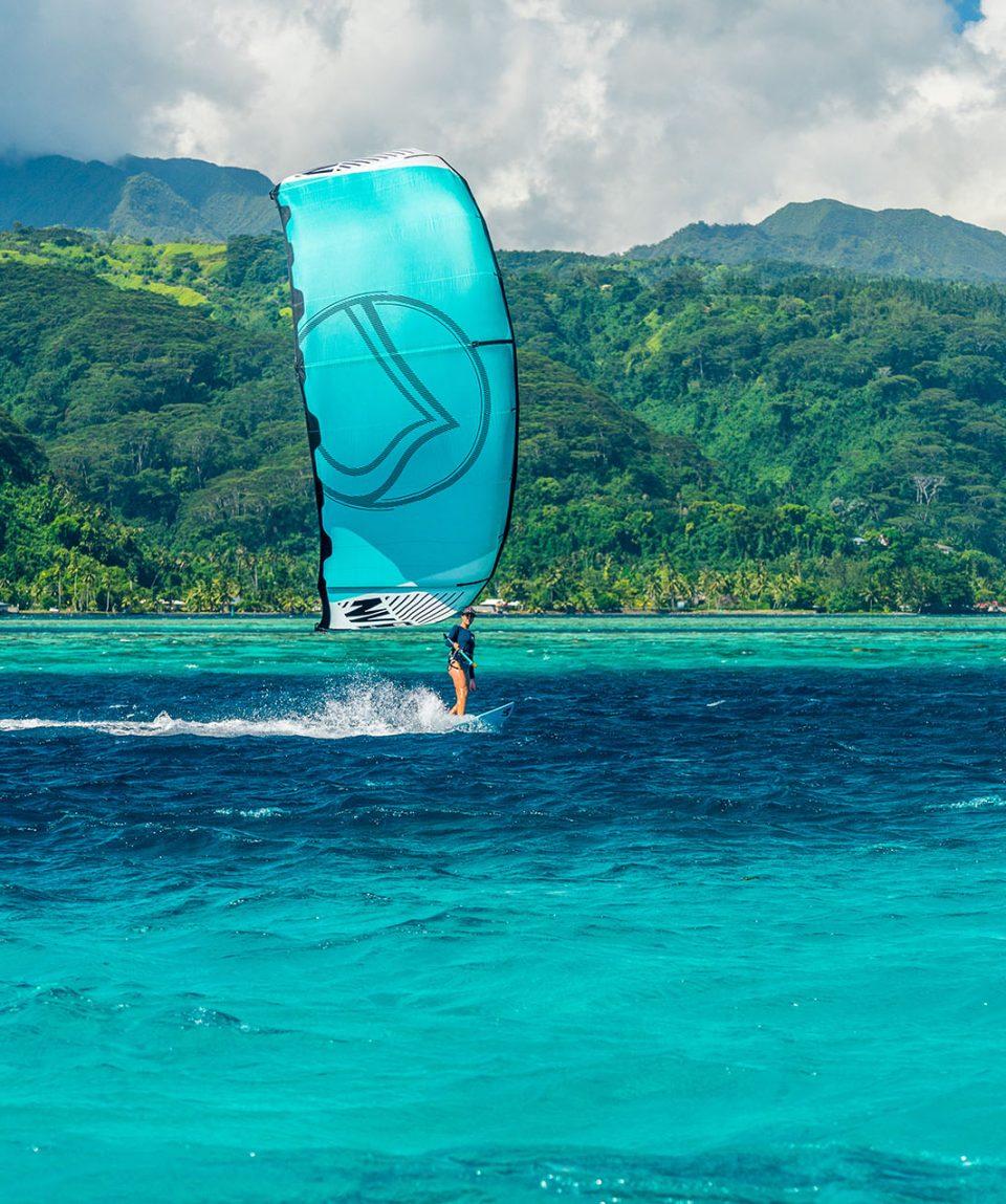 Pacific kite 3