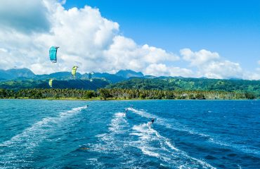 Pacific kite 4